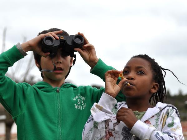 activitats d'educació ambiental