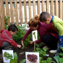 Tallers d'educació ambiental a les escoles