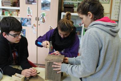 Tallers d'educació ambiental a l'escola