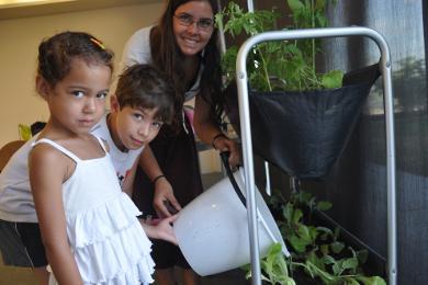 Tallers d'educació ambiental a mida
