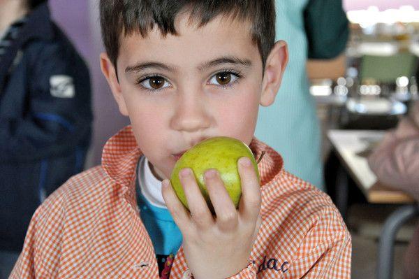 Alimentació saludable i equilibrada de dieta mediterrània al menjador escolar