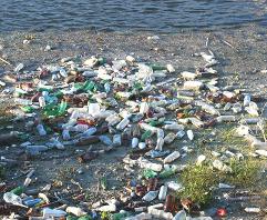 activitat sensibilització pel dia mundial del medi ambient
