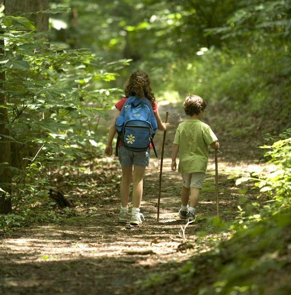 Excursions en família a l'estiu