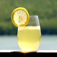recepta de llimonada casolana