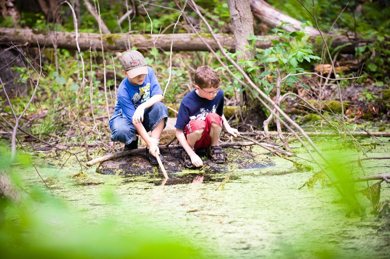 Dia mundial de l'educació ambiental a l'escola