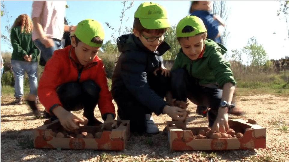 Reforestem amb els infants una zona del Delta del Llobregat