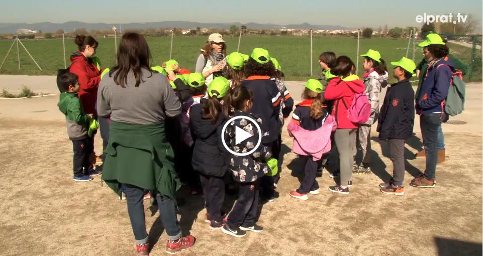 Activitat d'Aprenentatge Servei pel Dia dels Boscos