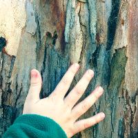 Activitat d'educació ambiental pel Dia Mundial del Medi Ambient
