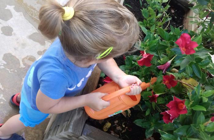 regar les plantes escola bressol