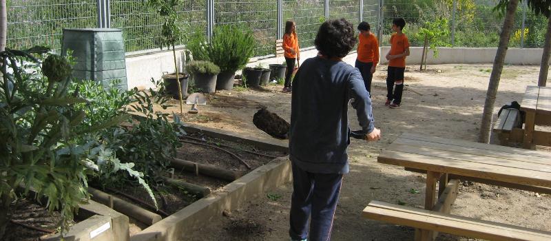renovar pati en jardí