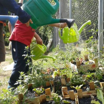5 maneres de fer un hort escolar al pati