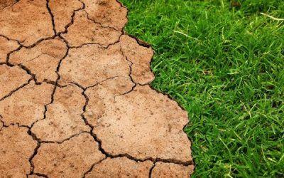 Una exposició sobre el canvi climàtic per a escoles i esplais