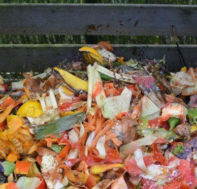 Activitats pedagògiques a partir del compostador