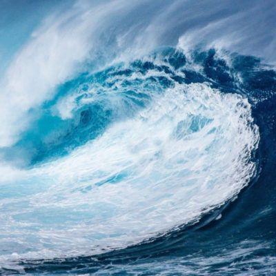 11 activitats educatives pel Dia Mundial dels Oceans – totes les edats