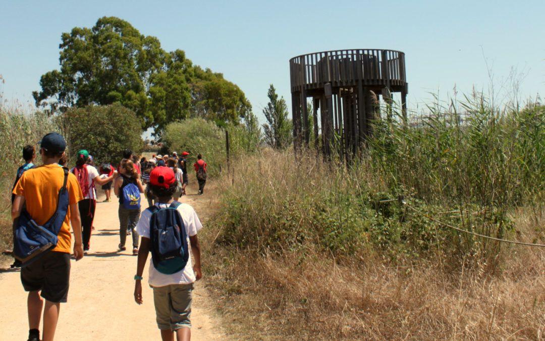 6 Sortides escolars per conèixer el Delta del Llobregat