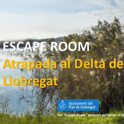 Una escape room sobre el Delta del Llobregat per a escoles i esplais