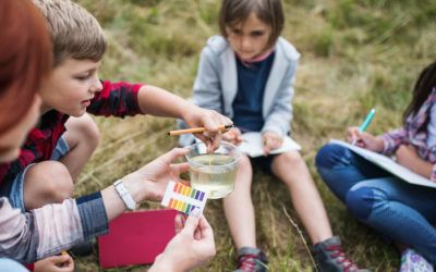15 projectes de ciència ciutadana per fer amb infants i joves