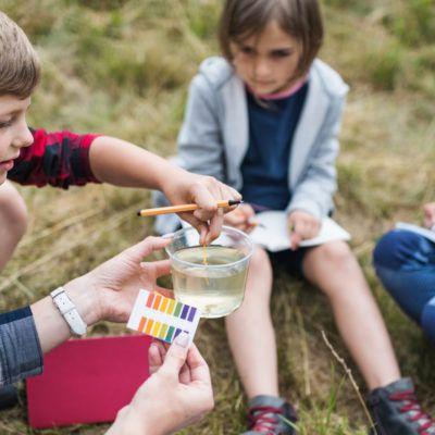 15 proyectos de ciencia ciudadana para hacer con niños, niñas y jóvenes