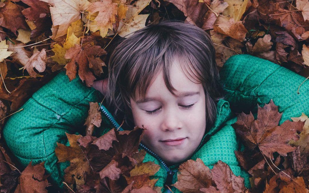 5 beneficis de fer colònies escolars a la tardor